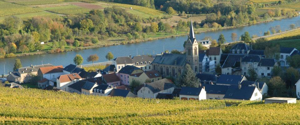 weingut-max-lahr-luxemburg-03