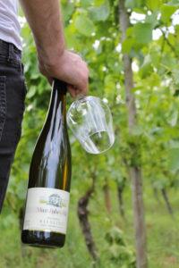 Weinflasche von de Domain Max-Lahr et fils